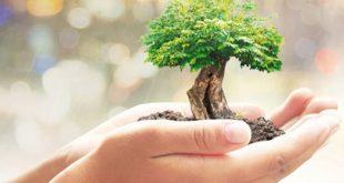 حسابداری مدیریت زیست محیطی - 34 اسلایدی محیط زیست حسابداری