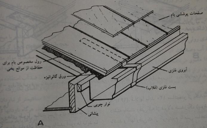 DSC_1519